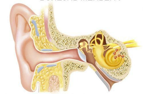 Causes and symptoms of diseases of the inner ear