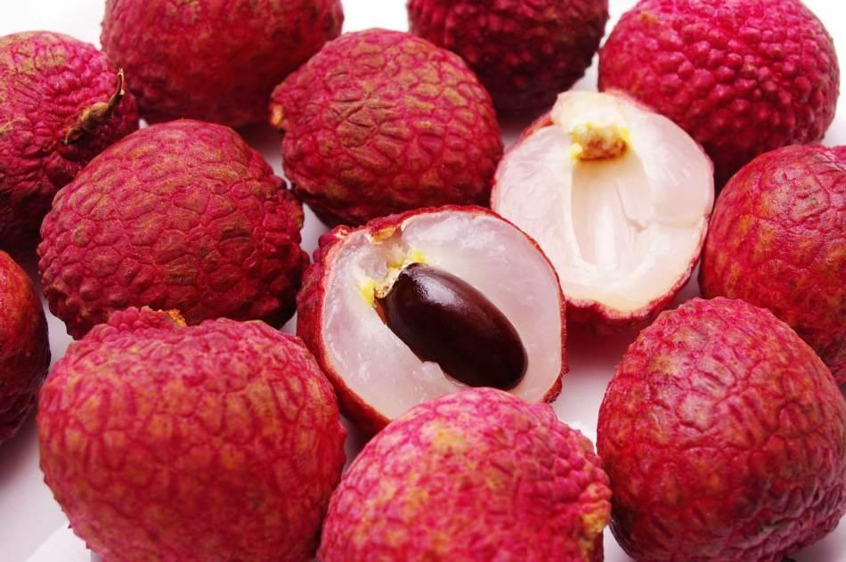 فاكهة الدوم
