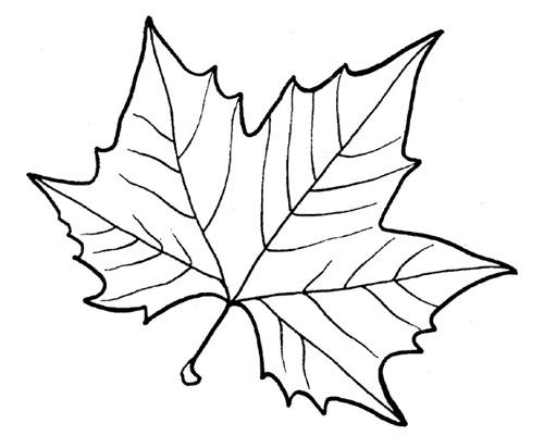 Форма для листьев своими руками
