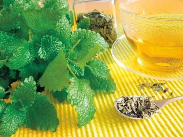 obstructive bronchitis treatment with folk remedies