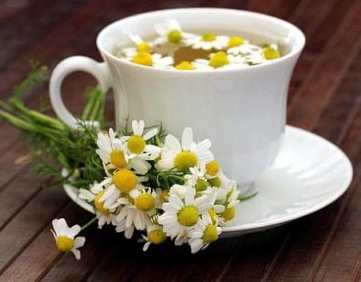 a decoction of chamomile flowers for gargling.