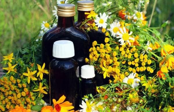 Herbal medicinal herbs for inhalations